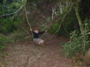 Natural swing